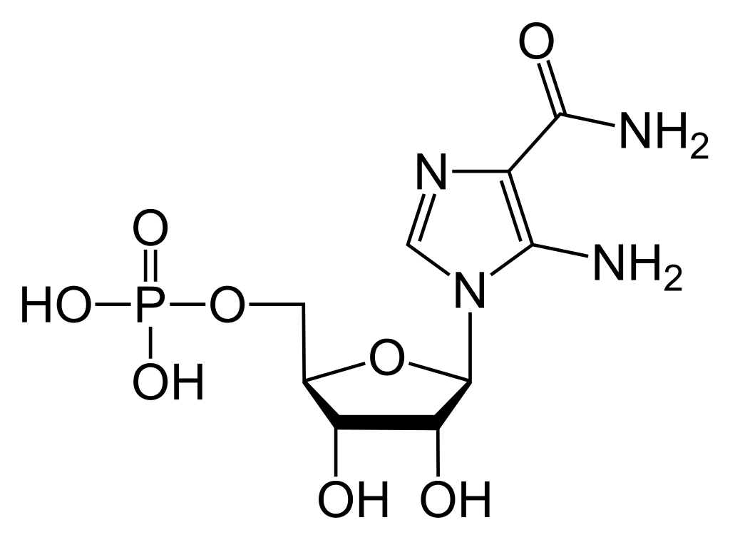 AICAR chemical structure