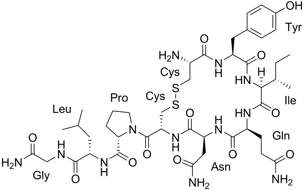 Chemical structure of peptide hormone Oxytocin