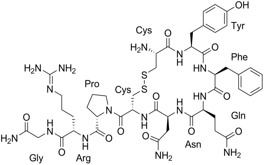 Chemical structure of peptide hormone Vasopressin